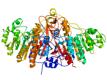 Sreucture of Alkaline phosphatase CAS 9001-78-9