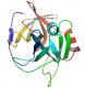 Estructura de la proteasa EC 8 V3.4.21.19 recombinante CAS 66676-43-5