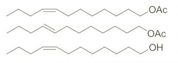 Z-8- 도데 세닐 아세테이트의 구조 E-8- 도데 세닐 아세테이트 Z-8- 도데 세놀 CAS WPNA-0001