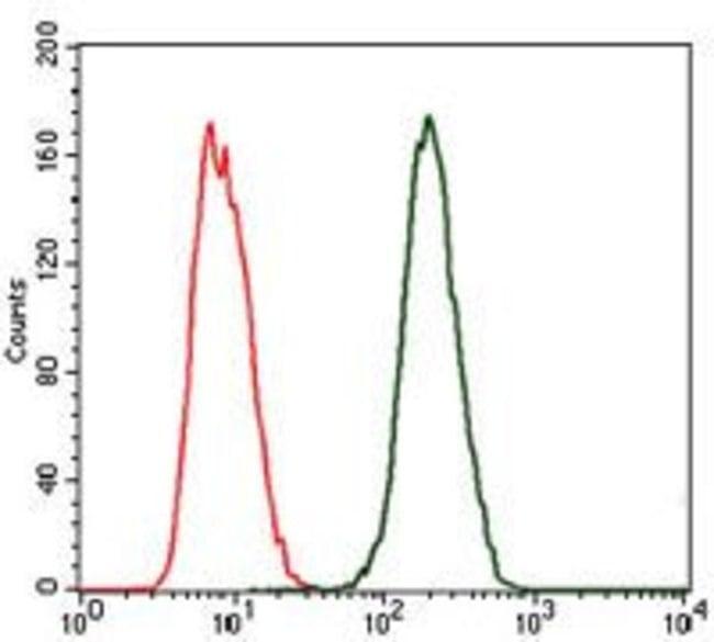 Anti-C-Reactive Protein (CRP) Antibody in flow