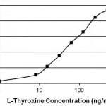 ELISAにおけるサイロキシンT4抗体